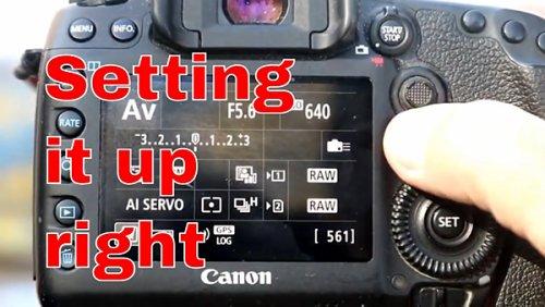 5 Key Camera Settings for Attention-Grabbing Bird Photos (VIDEO)