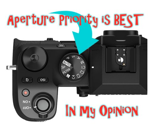 Aperture Priority is the Best Auto Exposure Mode for Mirrorless and DSLR Cameras