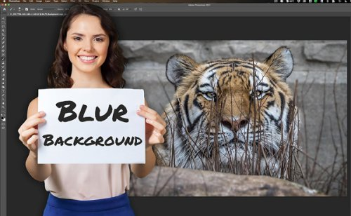 Make Natural-Looking Zoo Photos with This Easy Automated Photoshop Trick (VIDEO)