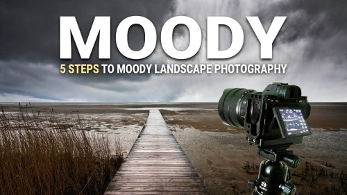 Capture Dramatic MOODY Landscape Photos with These 5 Tips (VIDEO)