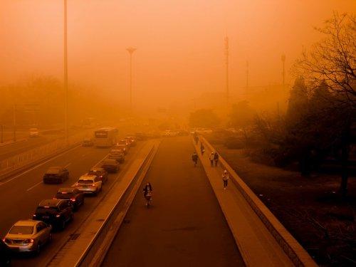 Día de la Tierra 2021: cuáles son los autos que menos contaminan el medio ambiente   Siempre Auto