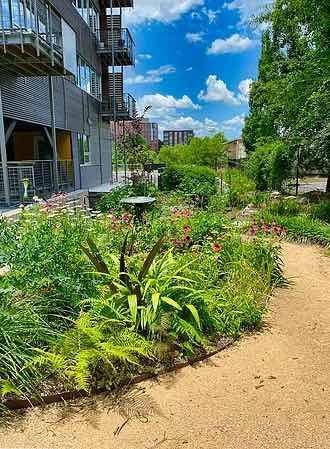 Urban, Low-Carbon, Transit Friendly Cohousing