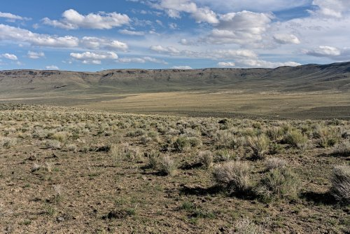 First Person Accounts – Saying No to The Lithium Mine at Thacker Pass