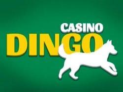 £1020 No Deposit Bonus Casino at Casino Dingo