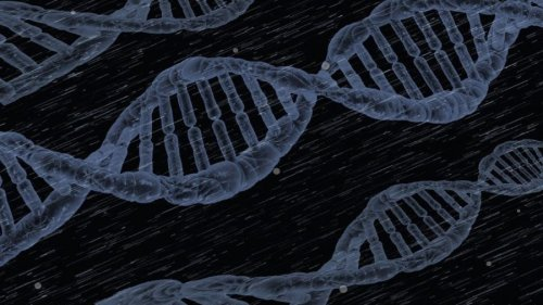 How One Round of Gene Therapy Fixed 48 Kids' Immune Systems
