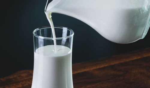 Study finds milk may shorten lifespan, but with one big exception