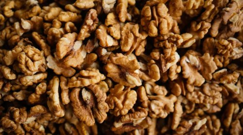 Study finds tree nuts offer major benefits when dieting to lose weight