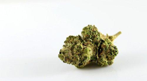 American Heart Association warns marijuana is a 'substantial' health risk