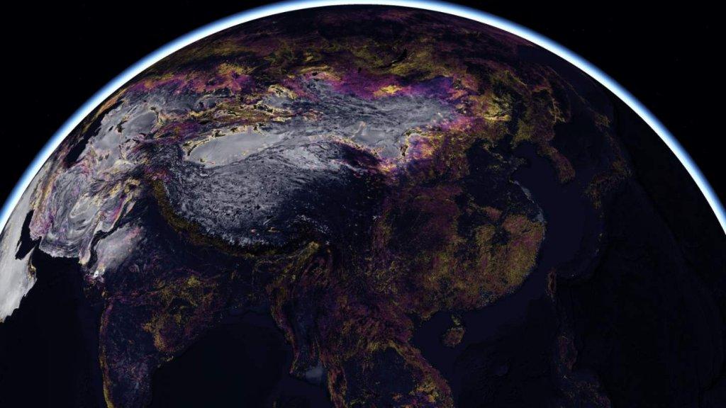 Environment - cover