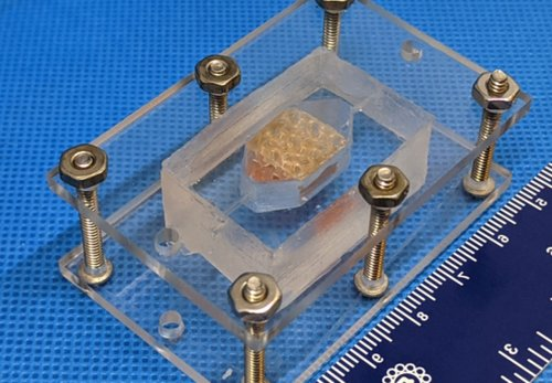 Teams from NASA Vascular Tissue Challenge create human tissue with 3D Printing