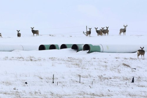 The Keystone XL Oil Pipeline Is Dead
