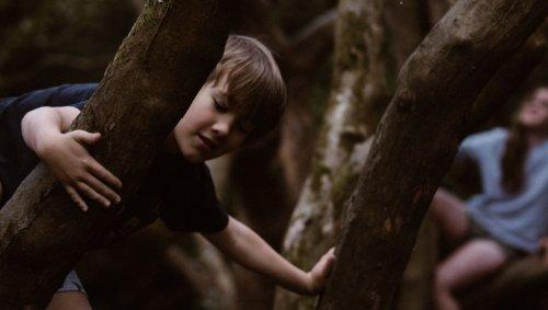 Des garderies finlandaises ont fait jouer les enfants dans des petites forêts, et cela a changé leur système immunitaire