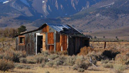 Persécuté par un ours, un homme écrit un message d'alerte sur le toit de sa cabane