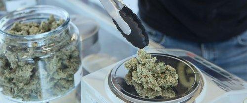Deux ans et demi après l'euphorie, la gueule de bois du cannabis canadien