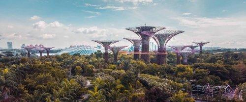 Construire une cité capitaliste utopique, le rêve « banal » du milliardaire Marc Lore