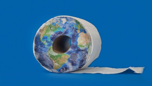 Que faire face au papier toilette, ce fléau pour l'environnement