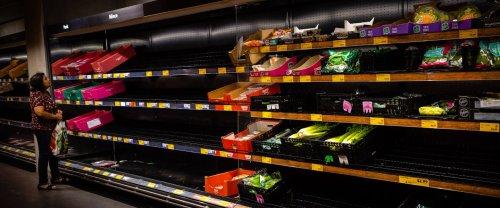 Pour camoufler les pénuries, les supermarchés britanniques utilisent des fruits et légumes en carton