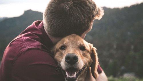 Pourquoi les millennials sont obsédés par les chiens?