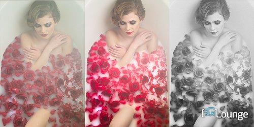 5 Milk Bath Photography Tips for Creative Boudoir Photos
