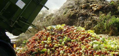 Cohort calls for $650M in federal funds to curb food waste in states, cities