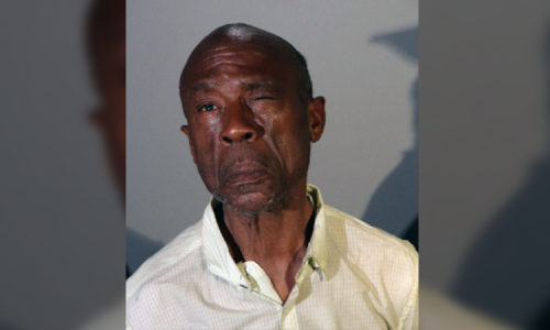 Hate crime charges for homeless man accused of purse snatching