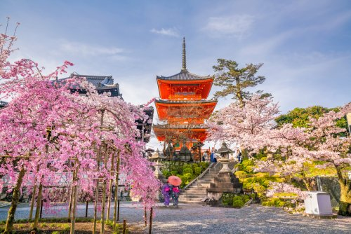 Can I Travel To Japan Now? April 2021 - Inside Kyoto
