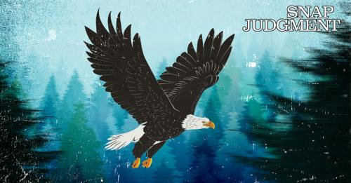 Birdzilla - Snap Judgment