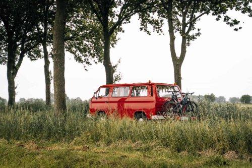 De Maashorst – Camping im wilden Naturschutzgebiet Nordbrabants – Sonne & Wolken