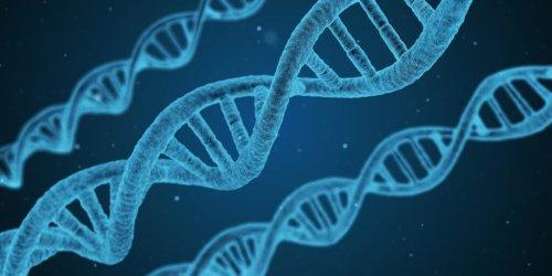 mRNA-Impfungen gegen Krebs einfach erklärt - Die Monacologin@Scilogs