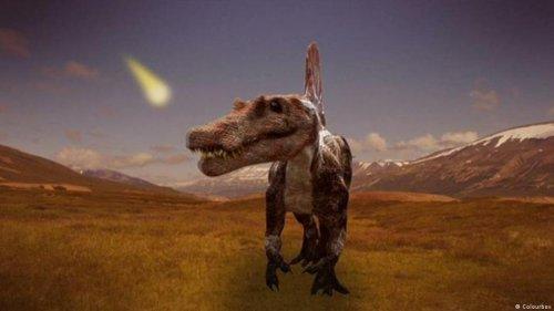 Projekt Zukunft: Welche Tiere haben die Dinosaurier überlebt?