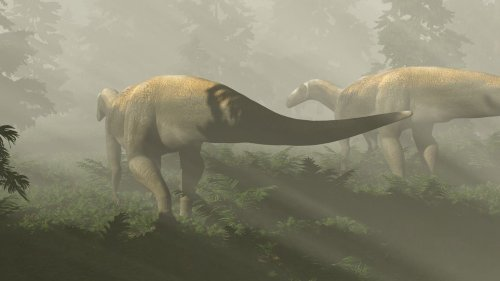 Paläoontologie: Riesiger Raubsaurier entpuppt sich als Vegetarier
