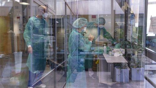 Antivirale Medikamente: Der Wirkstoff gegen das nächste Pandemievirus