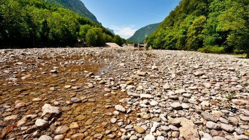 Wasser: Die meisten Flüsse versiegen jedes Jahr