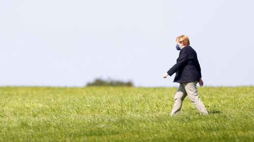 Storks (Wahl-)Spezialfutter: »Alle Umweltschutzziele wurden locker gerissen«