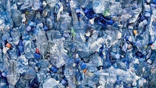 Plastikabbau: Enzyme sollen Plastik kompostierbar machen