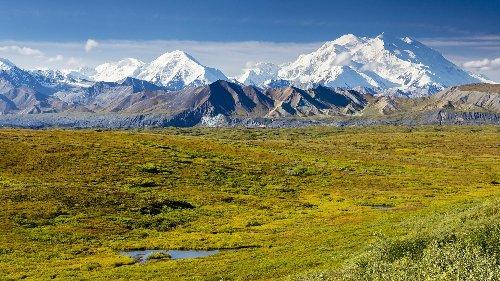 Klimawandel: Gletscher wälzt sich den Denali-Berg in Alaska hinab