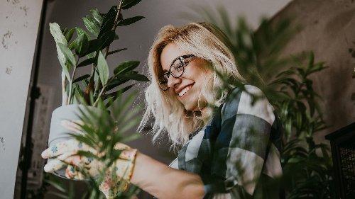 Mensch und Natur: Warum Pflanzen glücklich machen