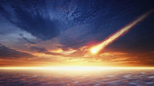 Südamerika: Asteroideneinschlag ließ Regenwälder erblühen