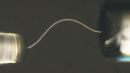Wasser als Baumaterial: Biegbare Fasern aus Eis sind tolle Lichtleiter