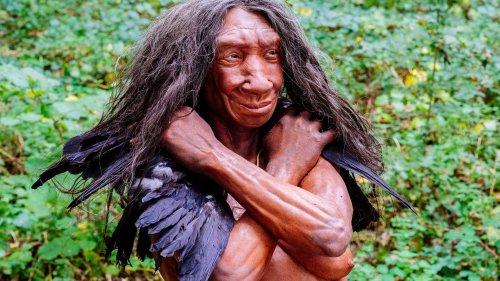 Ursprung der Zahlen: Die Rechenkünste der Neandertaler