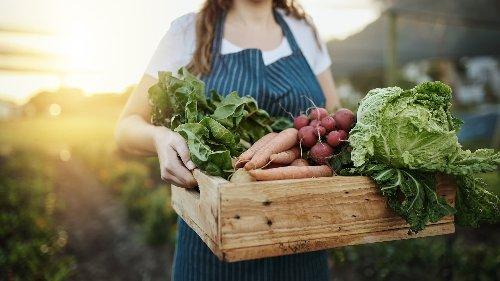 Ernährung: Der Traum vom Leben als Selbstversorger