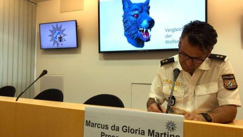 Elfjähriges Opfer: Vergewaltigung mit Wolfsmaske - Verdächtiger in Psychiatrie