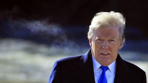 Enthüllungsbuch über Trump: Ein Käfig voller Narren