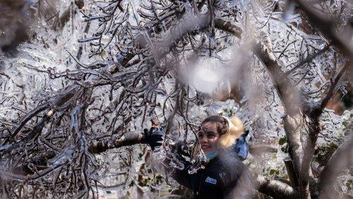 Minusgrade im Süden: Kältewelle bringt Schnee in Brasilien