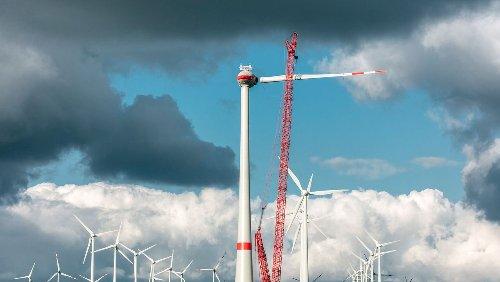 Baustopp für neue Windräder: Wenn der Rotmilan die Energiewende torpediert
