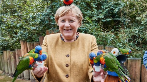 Angela Merkel im Vogelpark Marlow: Einmal ausgeflippt