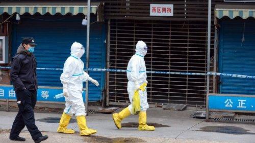 Ursprung der Coronapandemie: Forschergruppe kritisiert WHO-Bericht zu Wuhan