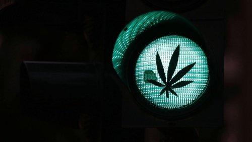 Cannabis-Legalisierung in Deutschland: Die Ampel steht auf Grasgrün