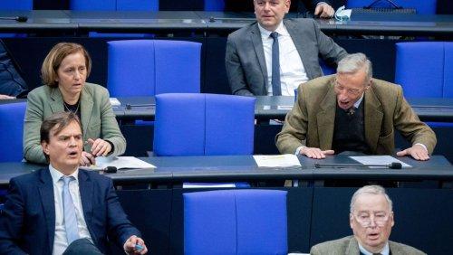 Weg von der AfD: Linke unterstützt FDP bei neuer Sitzordnung im Bundestag