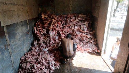 Soziale Not in Brasilien nach dem Lockdown: Wo Hungernde in Fleischabfällen wühlen